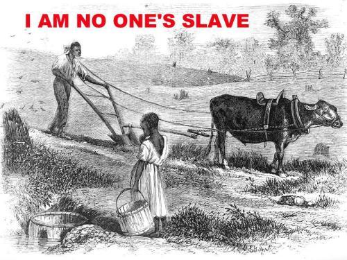 no-slavery